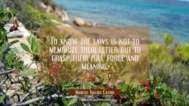 To know the laws is not to memorize their letter but to grasp their full force and meaning.