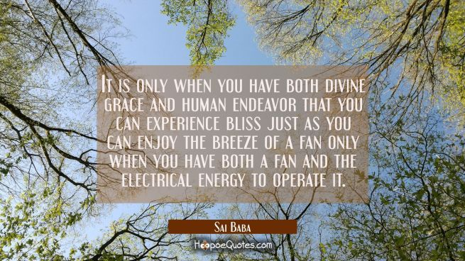 It is only when you have both divine grace and human endeavor that you can experience bliss just as