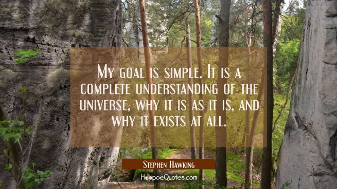 My goal is simple. It is a complete understanding of the universe why it is as it is and why it exi