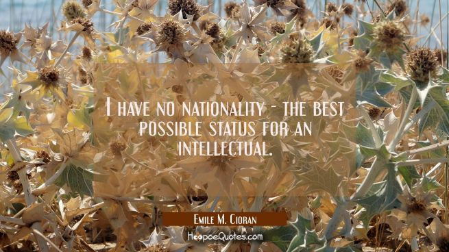I have no nationality - the best possible status for an intellectual.