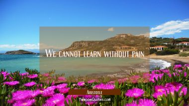 We cannot learn without pain Aristotle Quotes