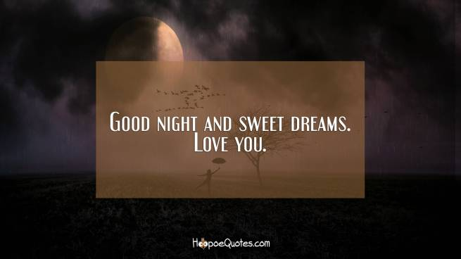 Good night and sweet dreams. Love you.