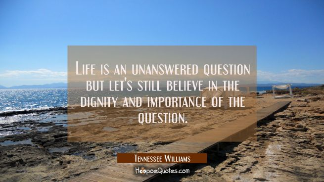 Life is an unanswered question but let's still believe in the dignity and importance of the questio