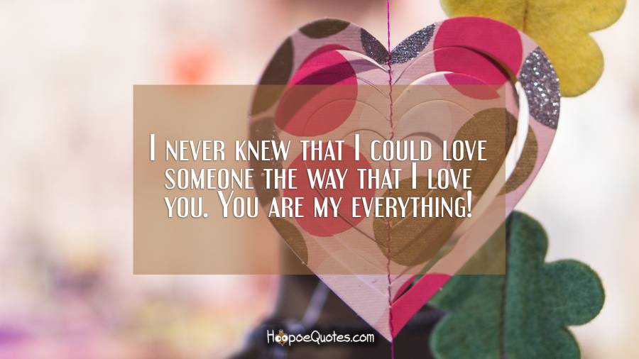 I never knew that I could love someone the way that I love you. You are my everything! I Love You Quotes