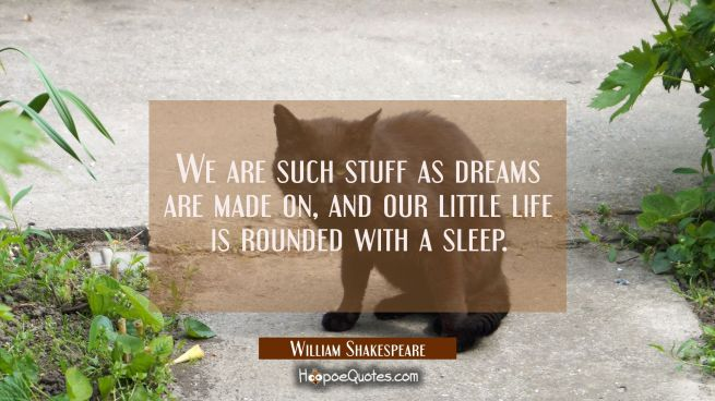 We are such stuff as dreams are made on, and our little life is rounded with a sleep.