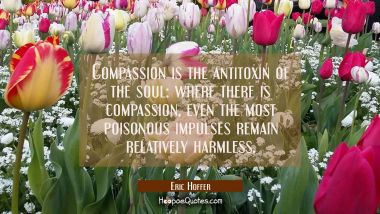 Compassion is the antitoxin of the soul: where there is compassion even the most poisonous impulses