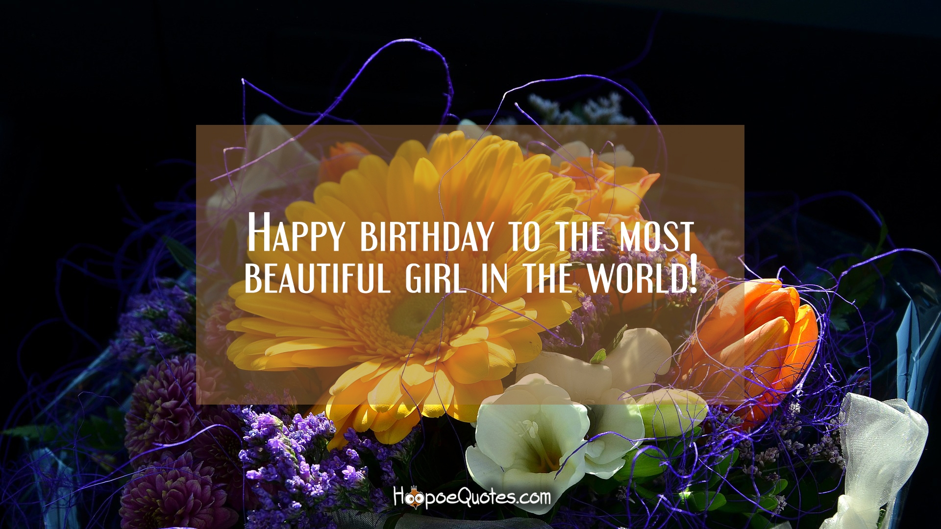 Happy Birthday To The Most Beautiful Girl In The World Hoopoequotes
