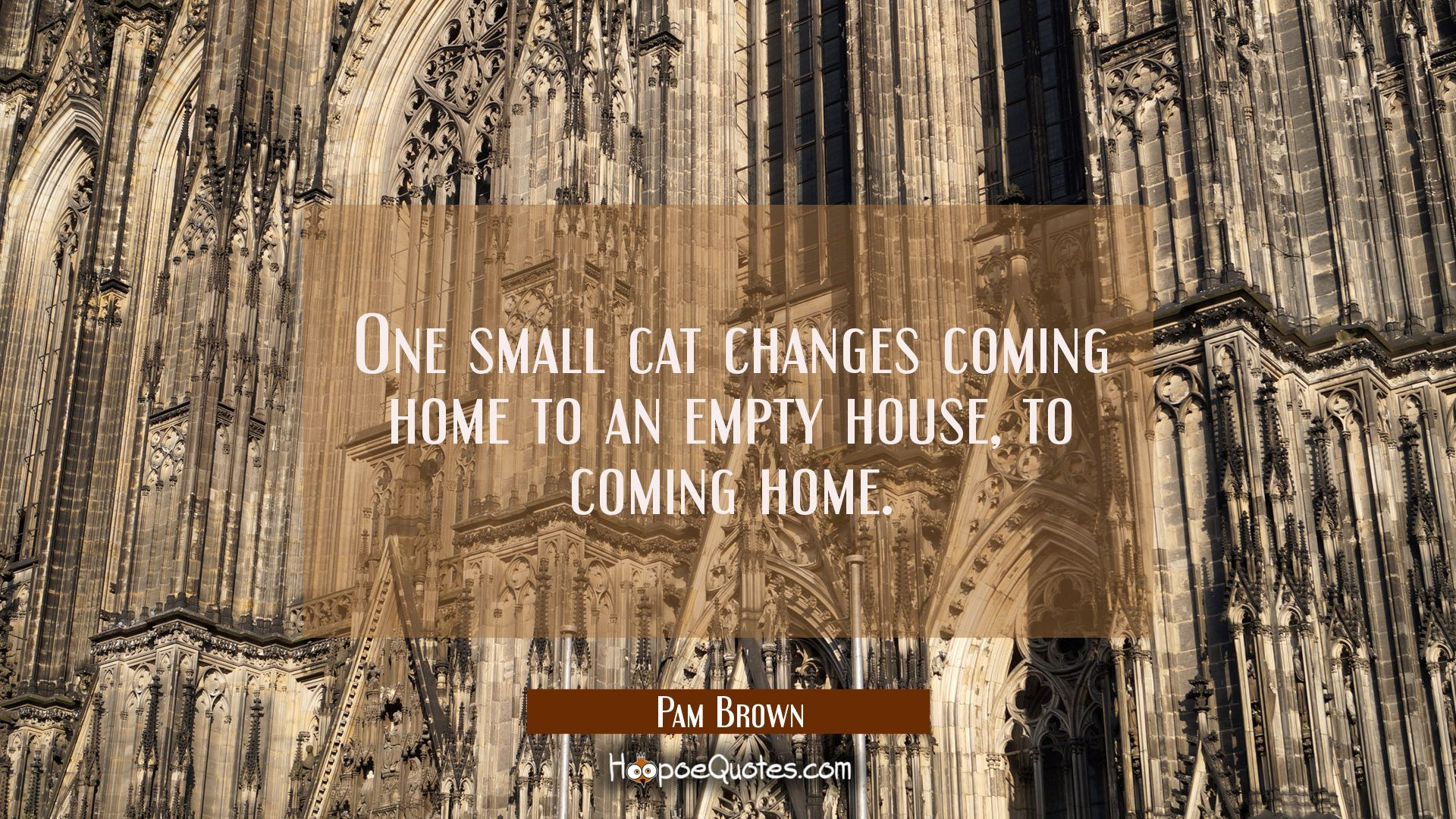 Coming Home Quotes One Small Cat Changes Coming Home To An Empty House To Coming Home