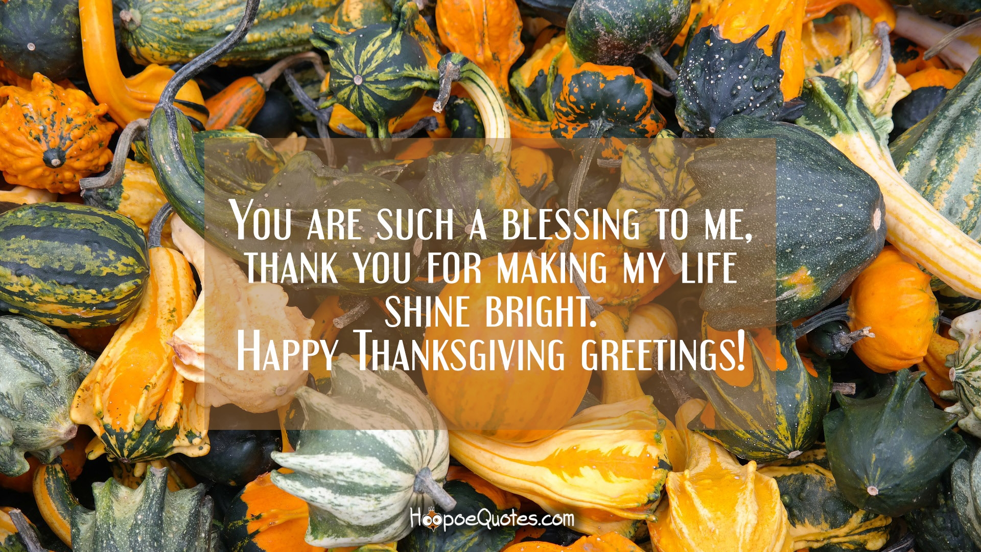 Thanksgiving messages hoopoequotes you are such a blessing to me thank you for making my life shine bright happy thanksgiving greetings kristyandbryce Gallery
