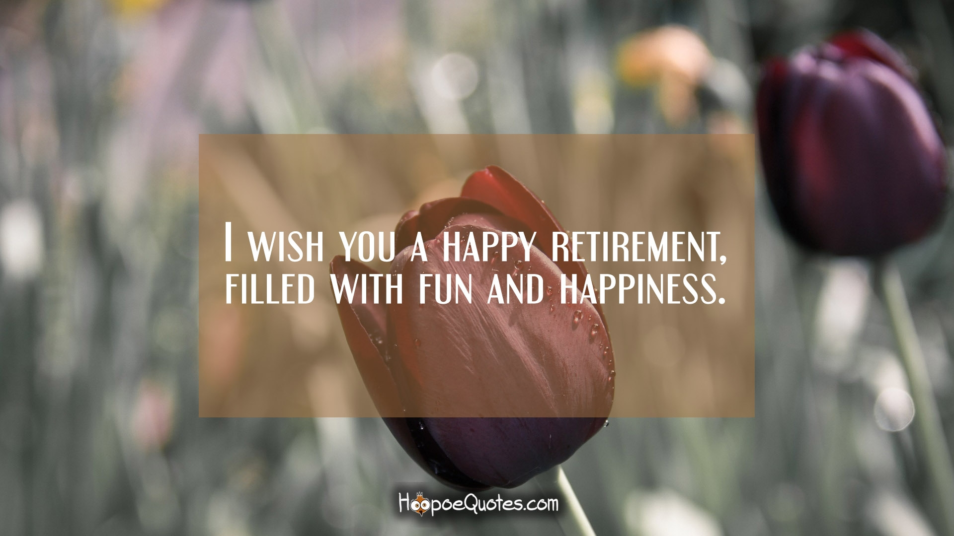 I wish you a happy retirement filled with fun and happiness 0 kristyandbryce Images